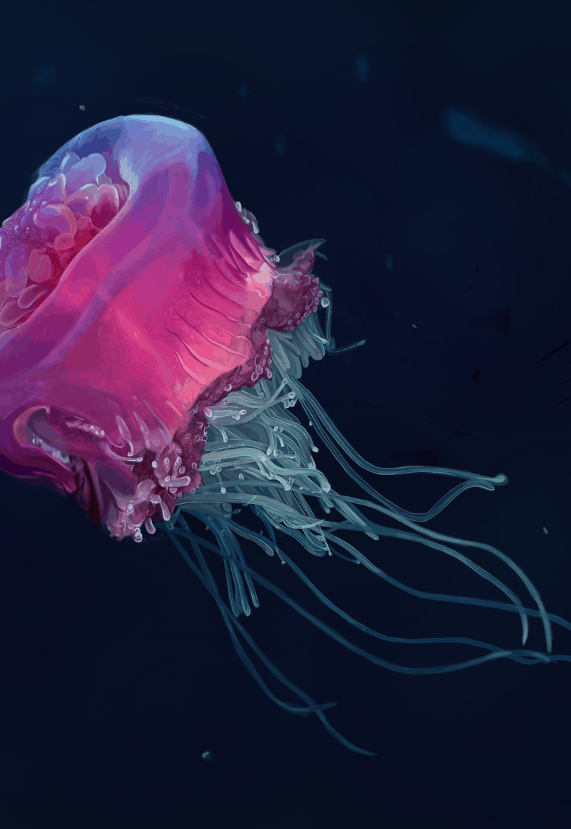 Harsh Underwater Environments and the Odd Creatures that Live There