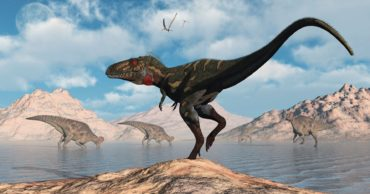 40 Dinosaurs Discovered in North America